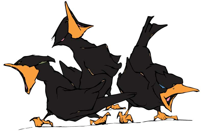 Three Loud Crows Web Services